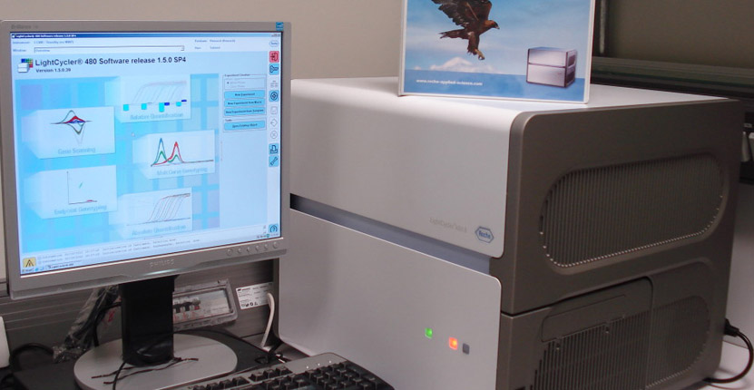roche_lightcycler_480_real_time_pcr-1024x503